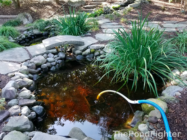 pond cleaning bethesda